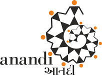 ANANDI India – Nonprofit, Gujarat. Women's Leadership Building, Feminist Research & Advocacy